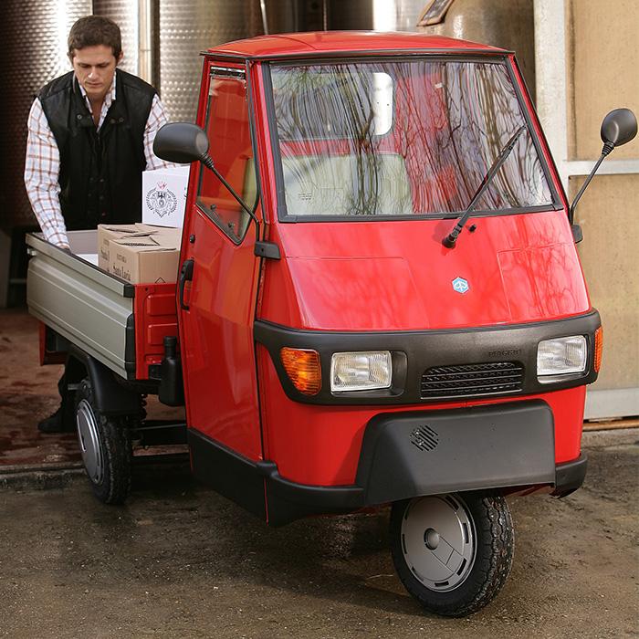 friesenscooter 25km mofa auto ohne f hrerschein. Black Bedroom Furniture Sets. Home Design Ideas